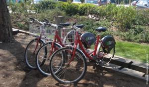 """""""BiCas"""": Bicicletas gratuitas em Cascais"""